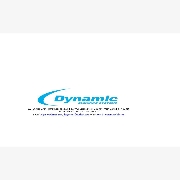 Logo of Dynamic Cleaning System