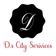 D.S City Serivices logo