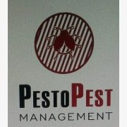 Logo of Pesto Pest Management