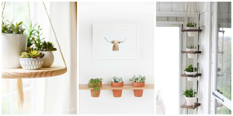 Planting Around Your House : Inspired new ways to hang plants around your home hometriangle