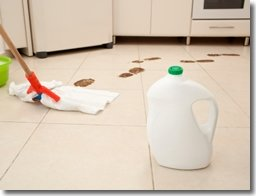 the best way to keep your ceramic floors clean and what type of flooring is best for bathrooms