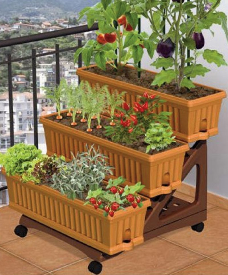 Potted Garden Eat straight out of your own potted garden hometriangle potted kitchen garden workwithnaturefo
