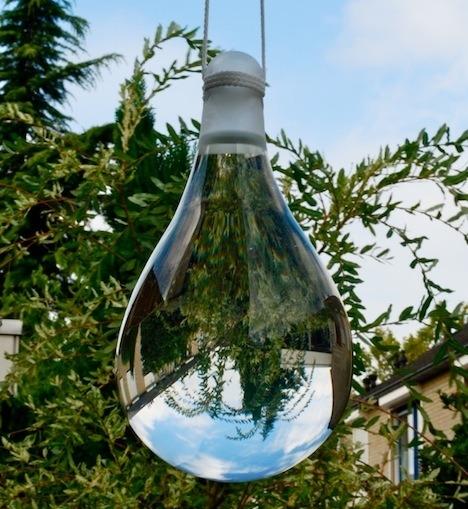 Get Rid Of Pesky Houseflies Forever! - HomeTriangle